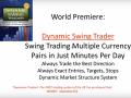Dynamic Swing Trader by Netpicks